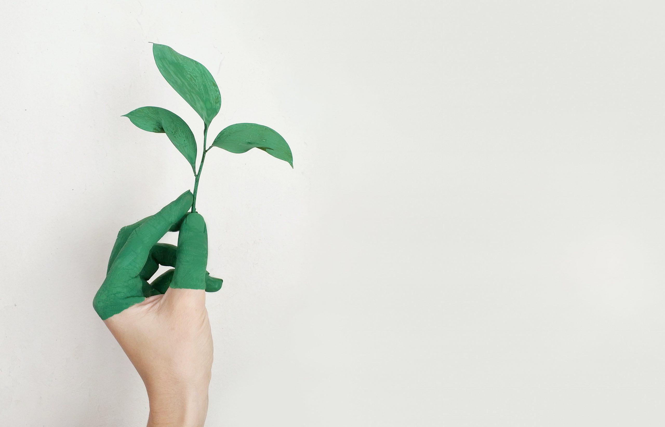 Ciekawostki ekologiczne o ochronie srodowiska