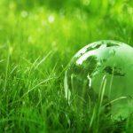 Dzień długu Ekologicznego - co trzeba o nim wiedzieć?